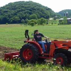 A Food Plot Lesson Learned – Take What You Can Get