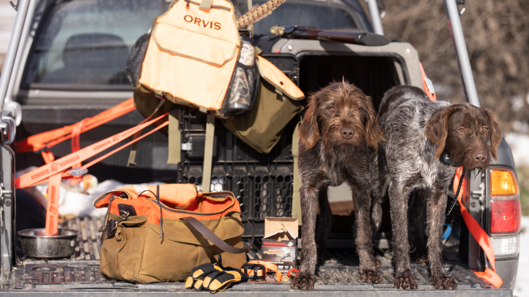 Necessities for Your Upland Kit   MeatEater Hunting