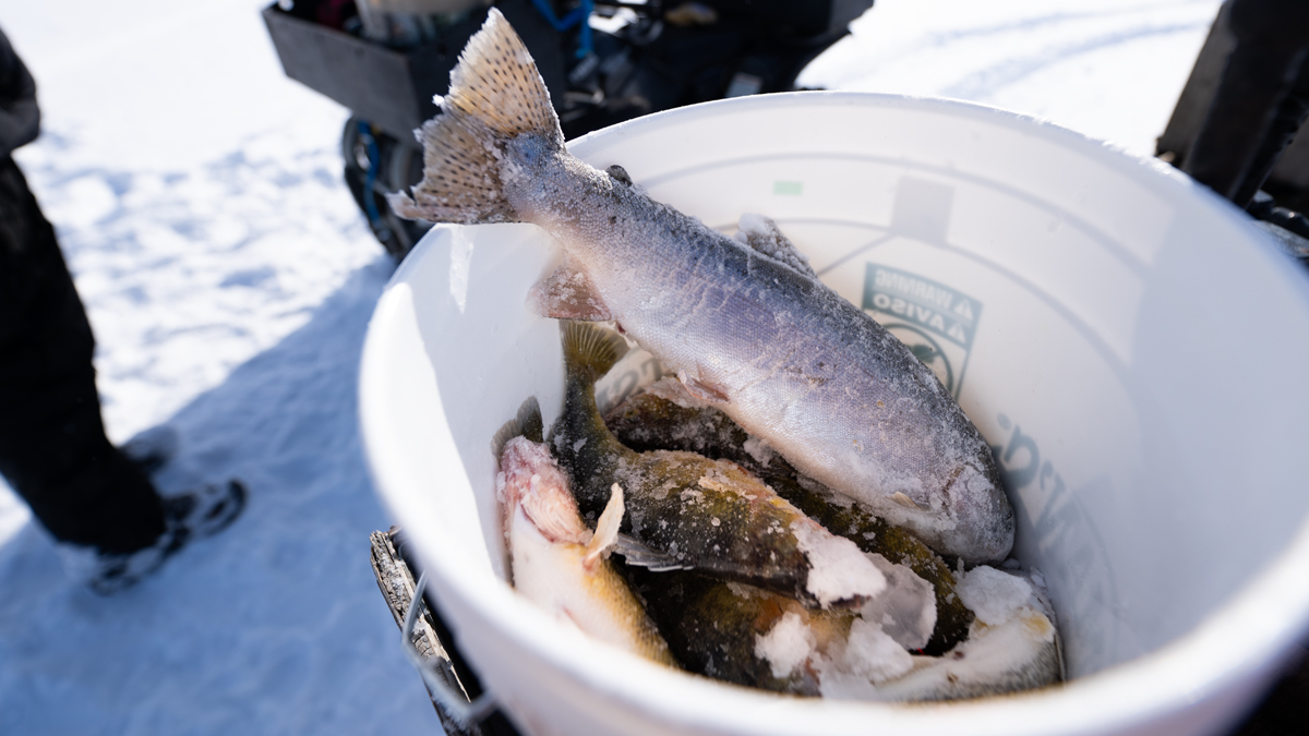 Hardwater Exposure: A Beginner's Look at Ice Fishing   MeatEater ...