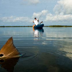 A Marsh of Your Own: How to Catch Redfish by Kayak