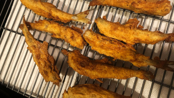 Fried smelt from the Kennebec River in Maine