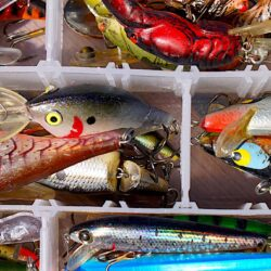 Best Bass Fishing Lures and Baits