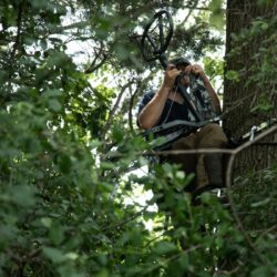 Ask MeatEater: How High Do You Hang Tree Stands?